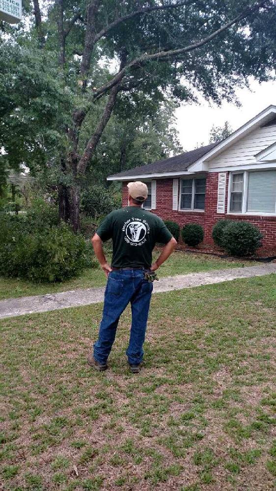 Archer Tree Service crew member